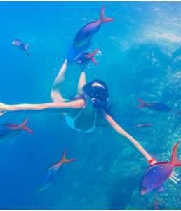 Snorkel Los Cabos