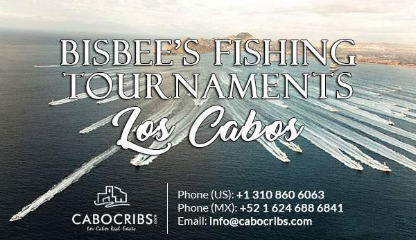bisbee-fishing-newsletter