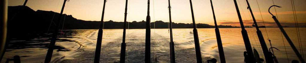 fishing in los cabos