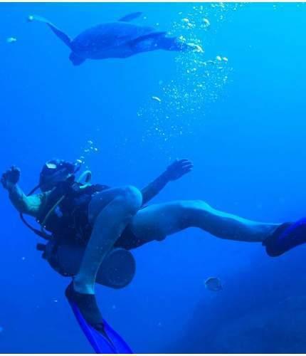 advanced open water course los cabos